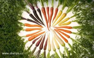 circle of carrot