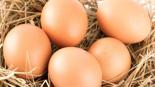 Čerstvá vejce